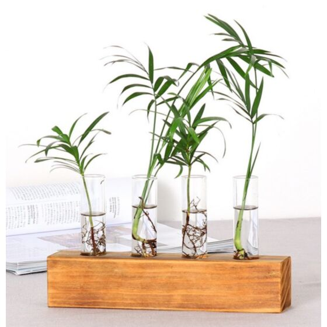 فازة خشبية مع فتحات زجاجية للنباتات الطبيعية